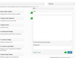 Screenshot showing the fields of a Text widget.