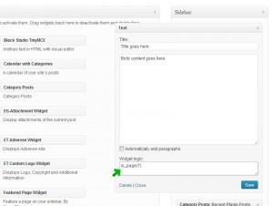 Screenshot showing the Widget Logic field within a widget.